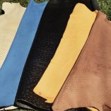Cream snake skin, Pacific blue, Black textured, Mustard, Tan snake skin